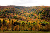 Catskills_Fall08